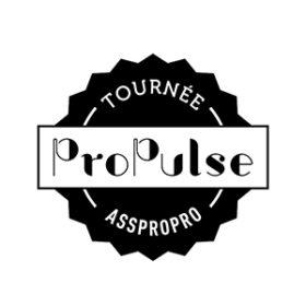 Eden Centre Culturel de Charleroi, partenaire, ProPulse, Tournée Asspropro, FWB, Fédération Wallonie-Bruxelles, artistes