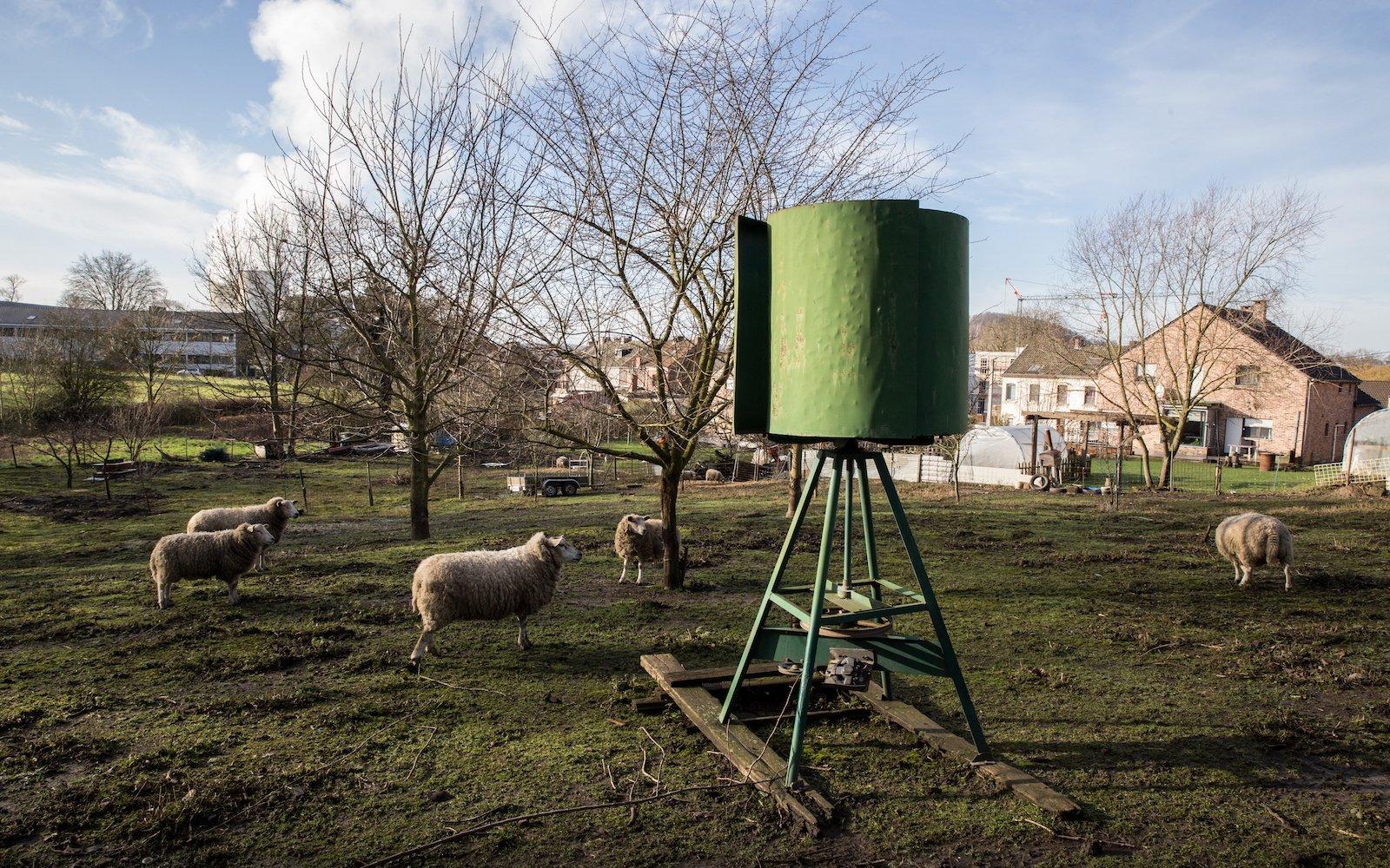Les Moutons (1600x1000)